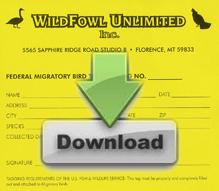 Wildfowl Bird Tag Download